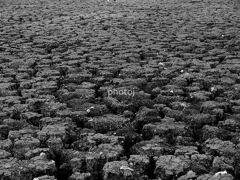 photoj S.A. The Dry Desert River Murray by photoj