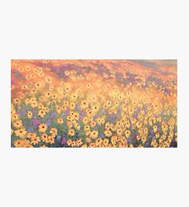 wildflower mural 3 Photographic Print