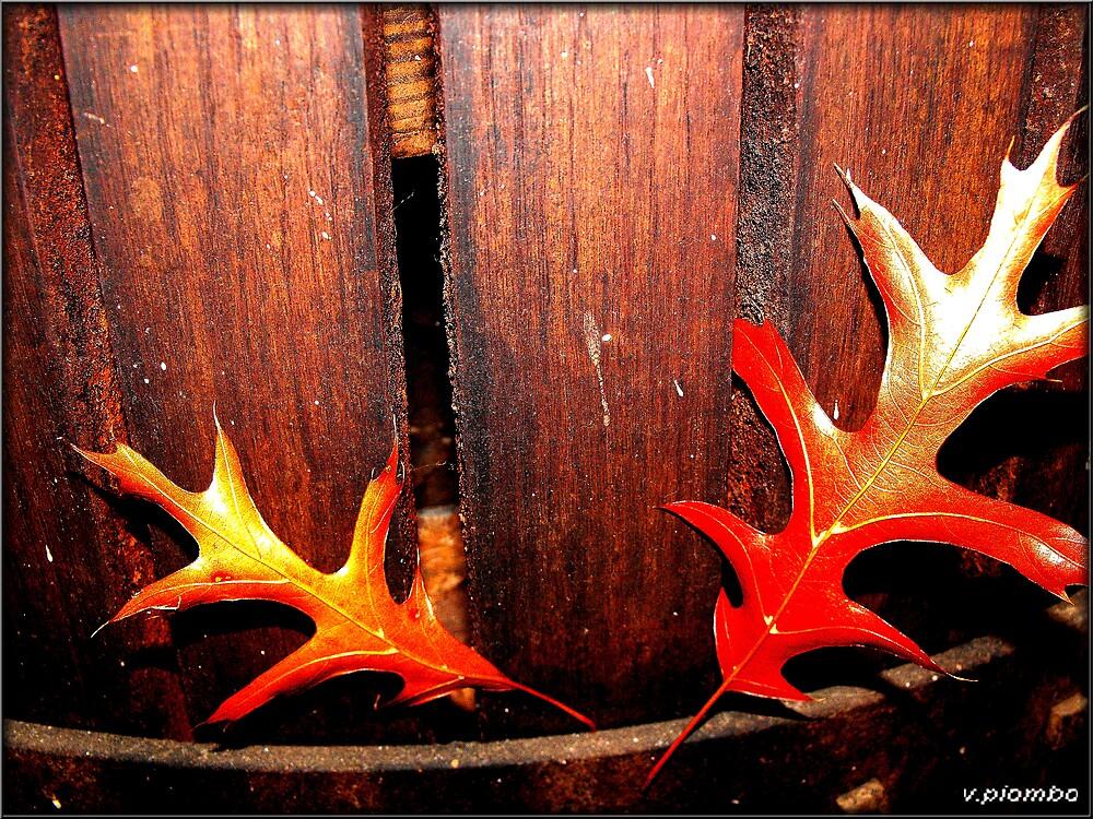 leaves against the grain by vpiombo