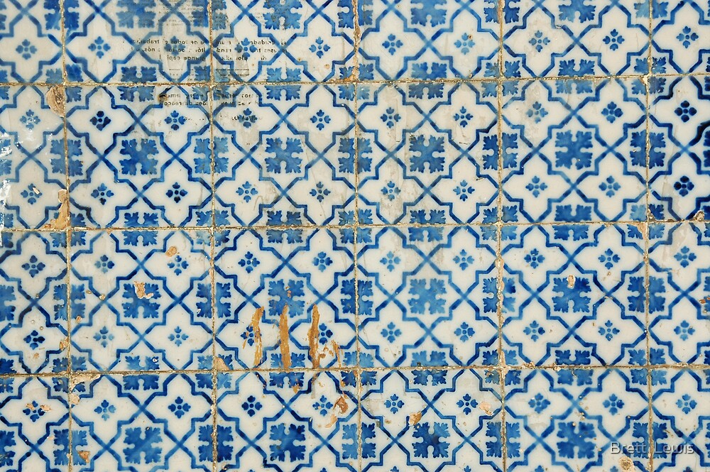 Tiles 6, Porto, Portugal by Brett  Lewis