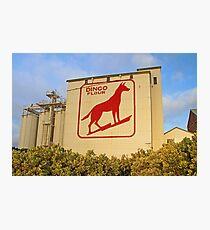 Dingo Flour Mill  Photographic Print