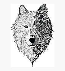 duo wolf Photographic Print