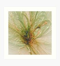 the laminated fly .... Art Print