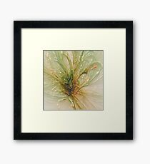 the laminated fly .... Framed Print