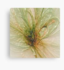 the laminated fly .... Canvas Print
