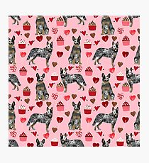 Australian Cattle Dog blue heeler valentines day cupcakes hearts love dog breed  Photographic Print