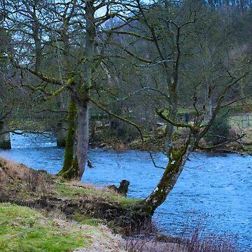 A River Runs Through It by bmosborn