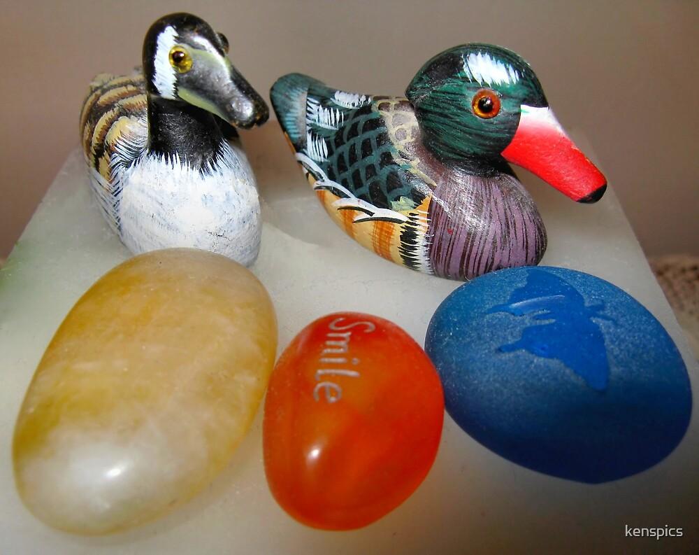 Sitting Ducks by kenspics