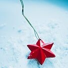 Star and snow by Jessica Sharmin