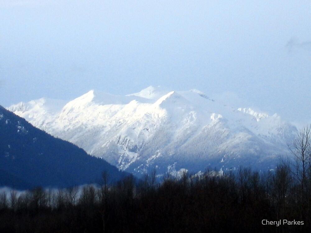 Glaciated Mountain by Cheryl Parkes