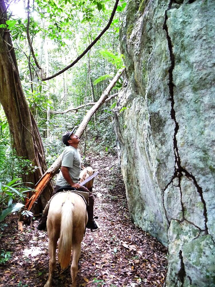 The Jungle Trail by Braedene