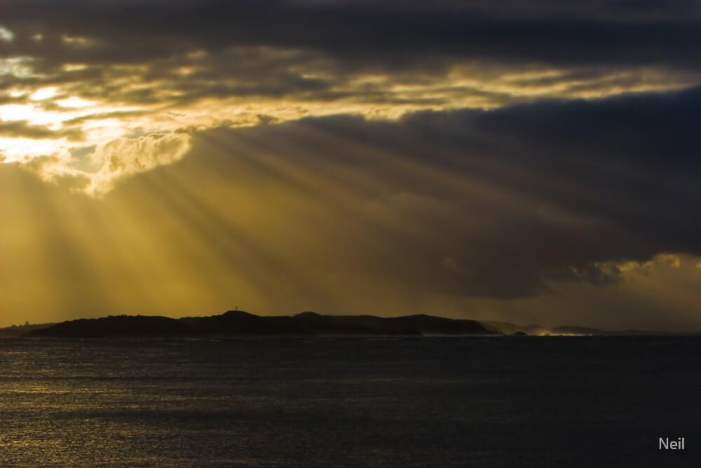 Sepia Dawn by Neil