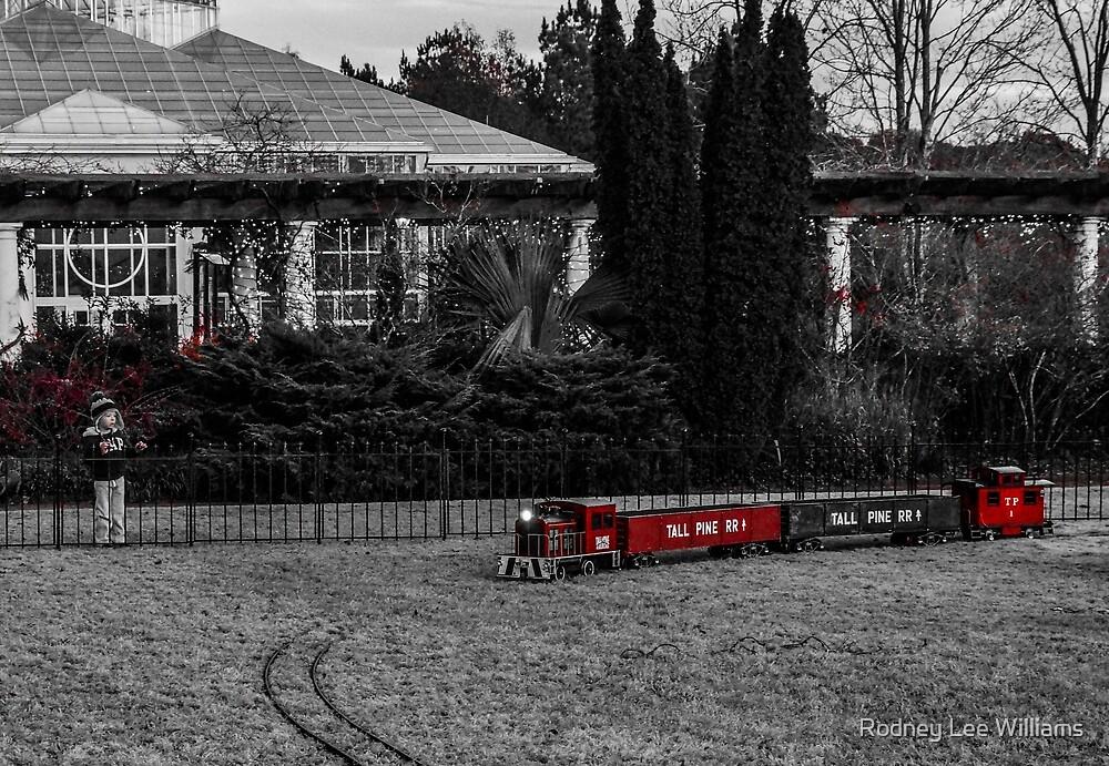 Train Spotting by Rodney Williams
