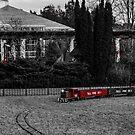 Train Spotting by Rodney Lee Williams