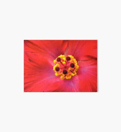 Red Flower Art Board