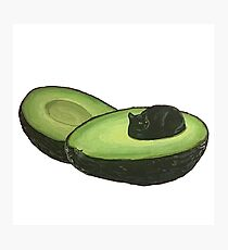 Avocado Cat Photographic Print