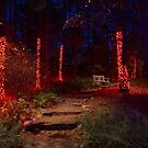 Christmas Garden 4 by Rodney Lee Williams
