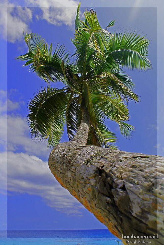 Palm of Fiji 2 by bombamermaid