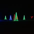 On a Silent Night by Rodney Lee Williams