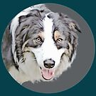 Border Collie by Kelly McKee