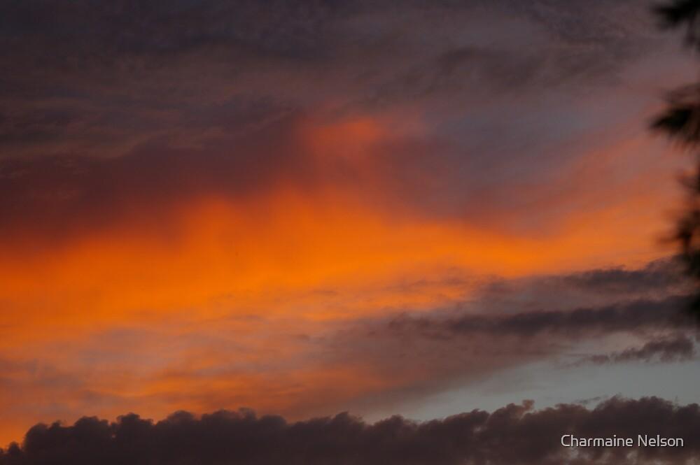 Fire Sky by Charmaine Nelson