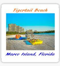 Tigertail Beach, Marco Island, Florida Painting Sticker