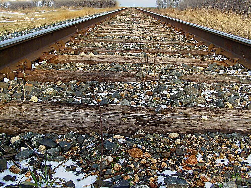 down the tracks by Cheryl Dunning