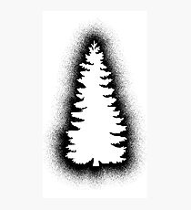 Fur Tree - Graffiti Black Photographic Print