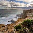 Stormy Day at Cape Nelson, Victoria by Christine Smith