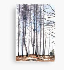 The colour of Winter is in the imagination Metal Print