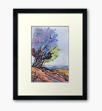 For the Tree-lovers Framed Print