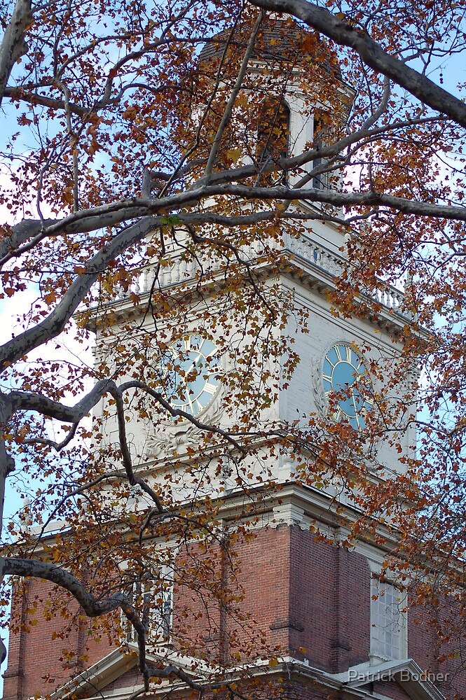 tree independence hall by Patrick Bodner
