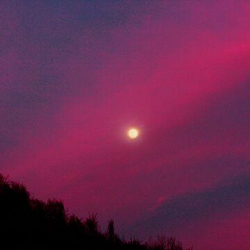 moonlight by kevmccool