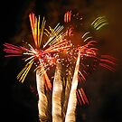 Firework Palm Trees by TLCGraphics