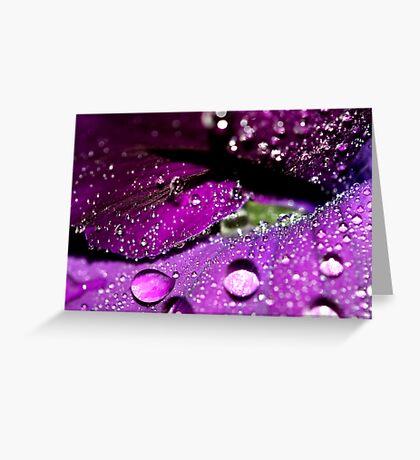 Velvet Sparkles Greeting Card