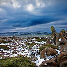 Mt Wellington Plains, Hobart, Tasmania by James Nielsen