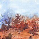 Bushveld heat by Maree Clarkson