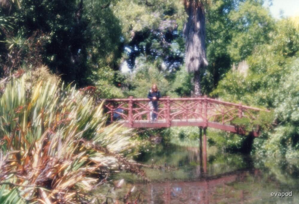 Bridge reminiscent of Van Gogh by evapod