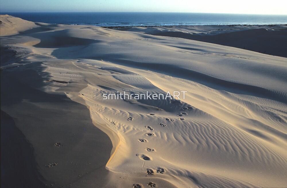 Stockton Bight Frontal Dunes by Bernadette Smith (c) by smithrankenART