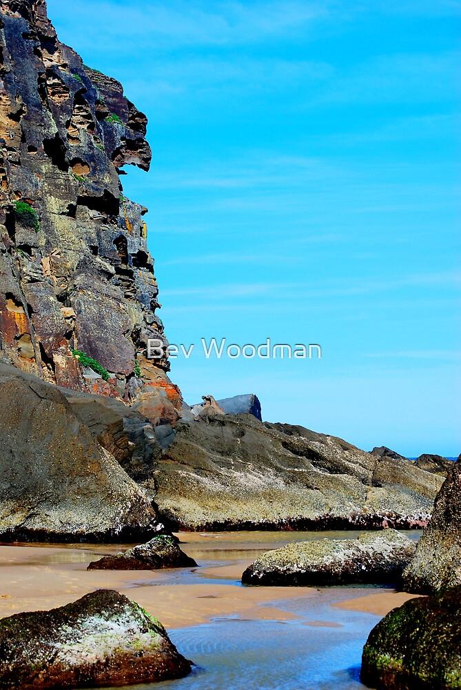 Eagle Face - Redhead Beach NSW by Bev Woodman