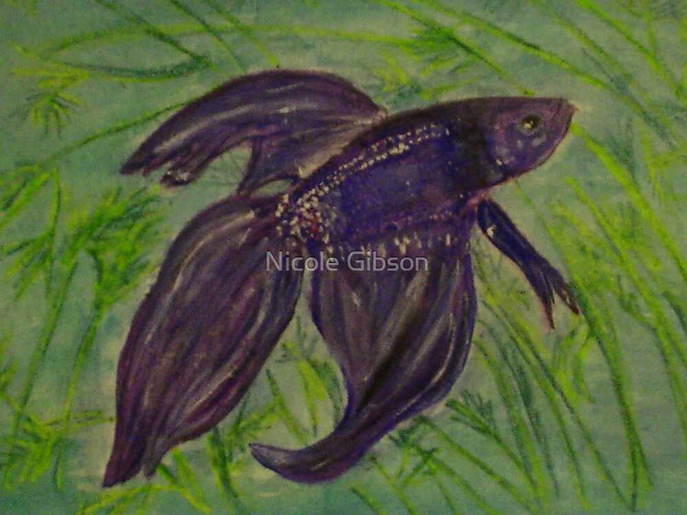 Siamese Fighting Fish by Nicole Gibson