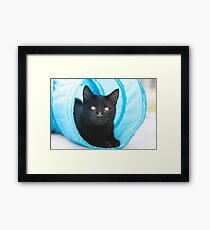Black cat playing in tunnel Framed Print