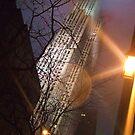 New York  by Anca  Reichlmair