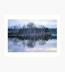 A Lonely Island in a Pond.......... Art Print
