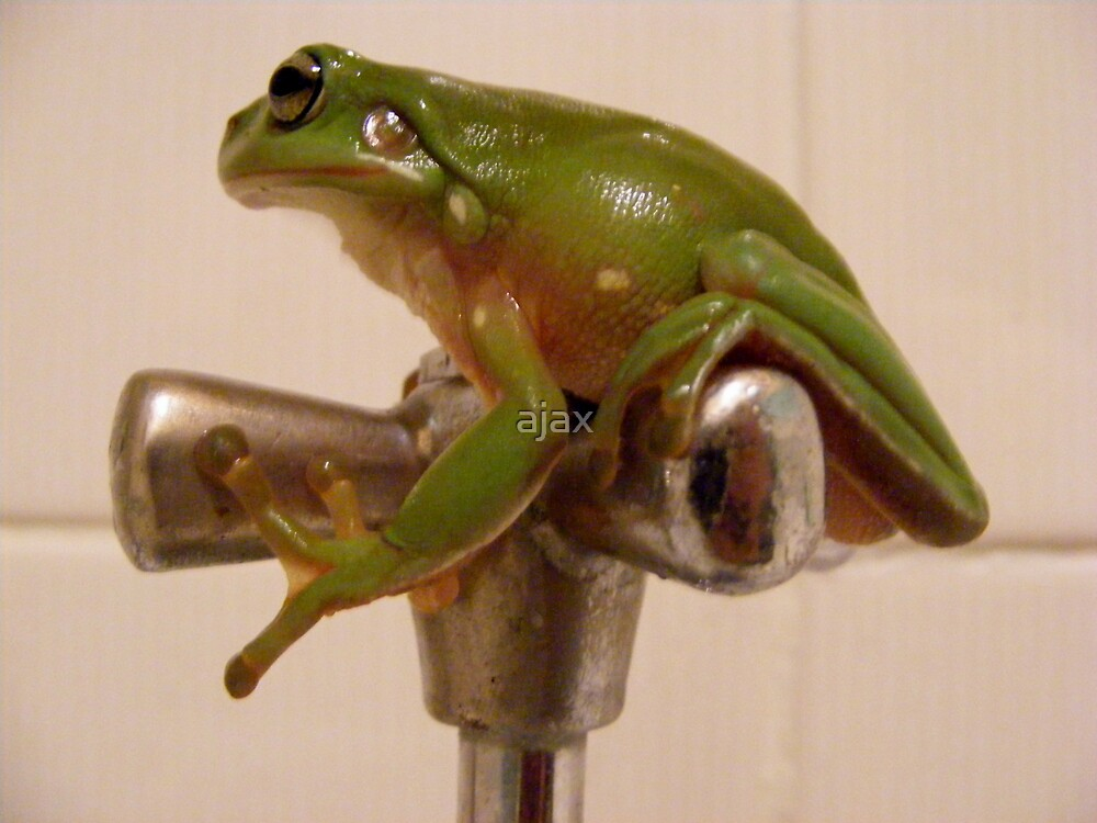 frog on tap by ajax