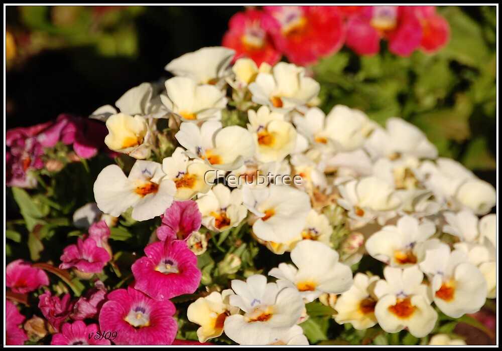 Radiant Love by Cherubtree
