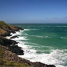 Strumble Head Seascape  by Anthony Thomas