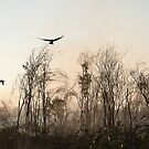 Bush Fire by somewherestudio