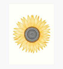Goldene Mandala-Sonnenblume Kunstdruck
