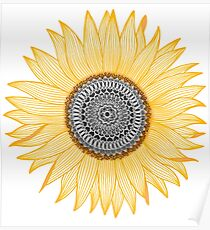 Golden Mandala Sunflower Poster